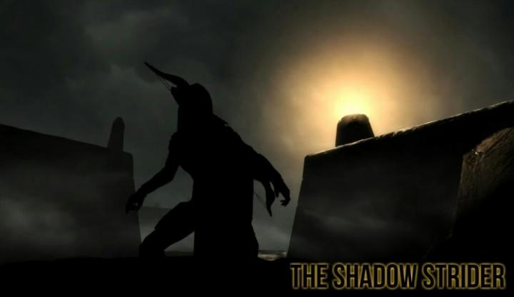 Tamriel Vault - Character Build: The Shadow Strider